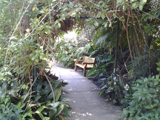 A great place to contemplate life - Sunken Gardens